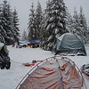 Hiking & Snowshoeing : 2010 New Year Eve Winter Camp Out